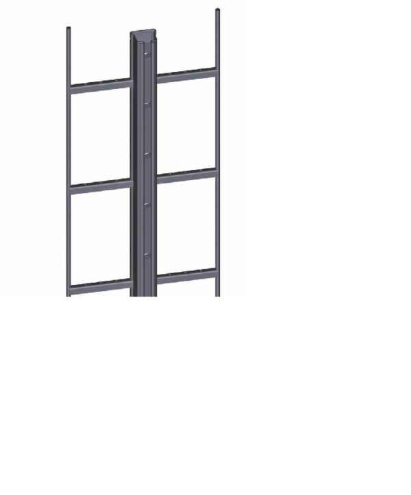 ladder with frame